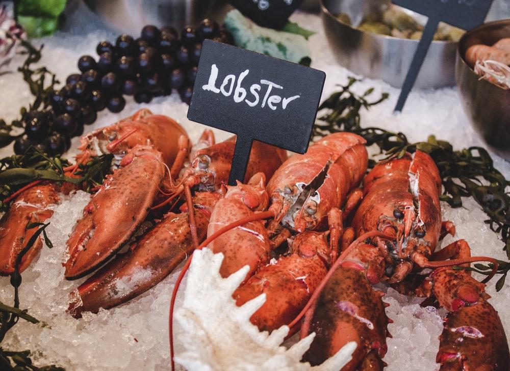 Carne De Langosta: Deliciosa Y Nutritiva